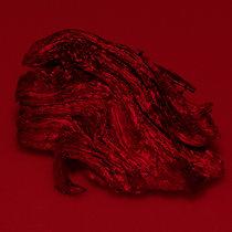 FEBRILE DISORDER (LIVE) cover art