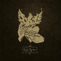 Night Raider cover art