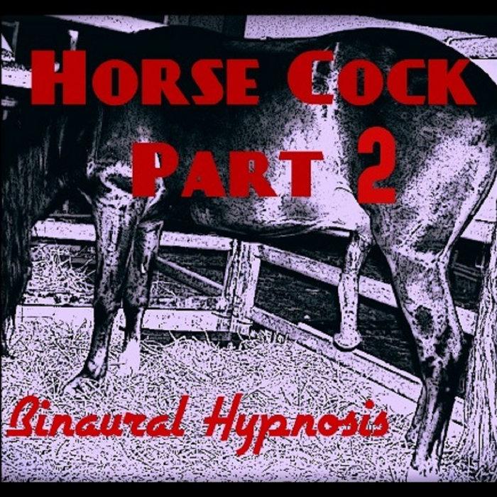 Horse Cock 2 Penis Enlargement Hypnosis Binaural