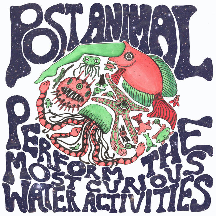 Post Animal Perform the Most Curious Water Activities cover art