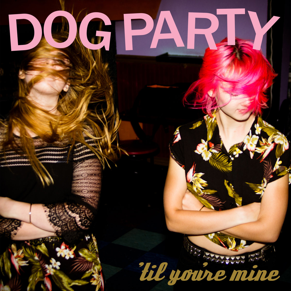 Image result for dog party til you're mine