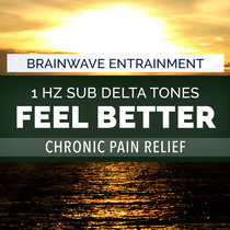 Chronic Pain Relief - 1 Hz Sub Delta Brainwave Entrainment cover art