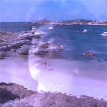 楽園の喜び cover art