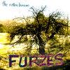 FURZES Cover Art