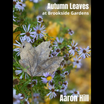 Autumn Leaves (at Brookside Gardens) cover art
