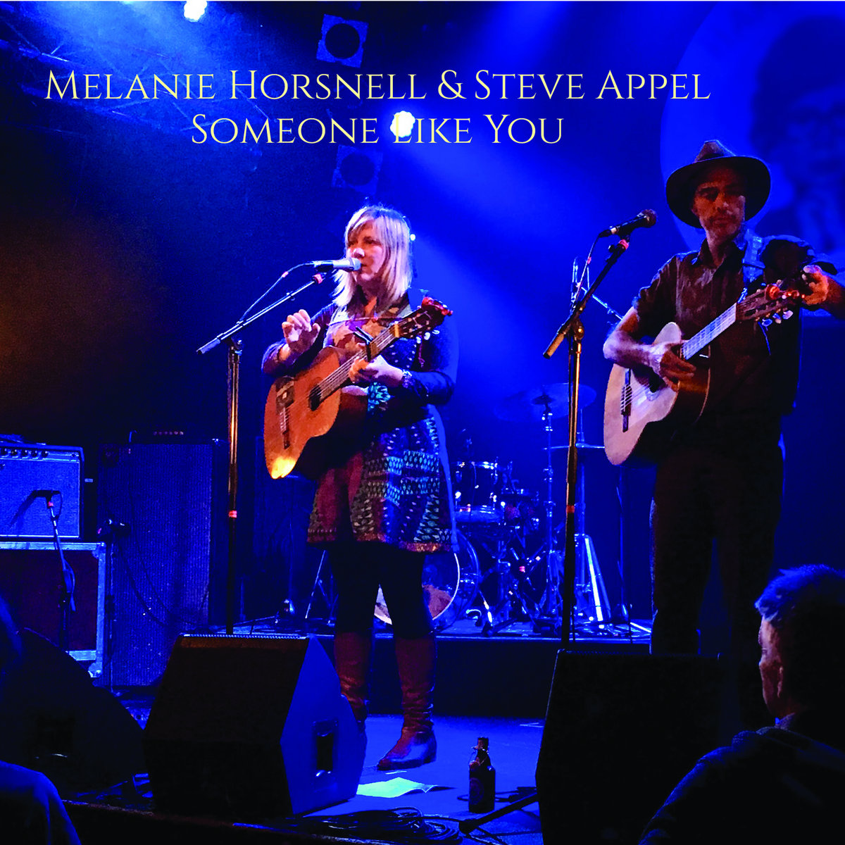 Someone Like You by Melanie Horsnell & Steve Appel