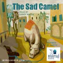 The Sad Camel (4+) cover art
