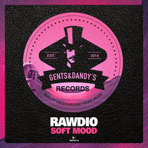 Rawdio - Soft Mood cover art