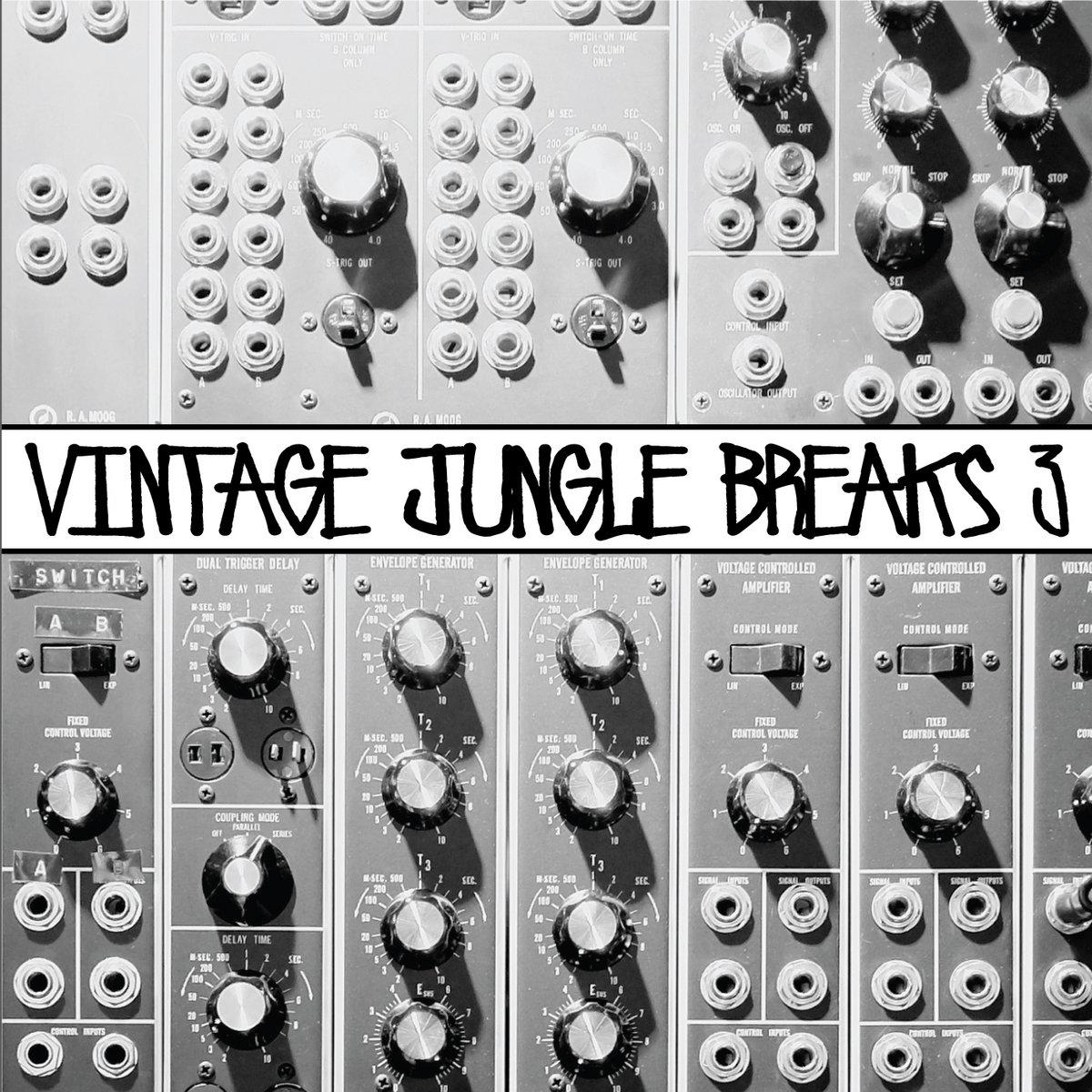 Vintage Jungle Breaks 3 | 6Blocc