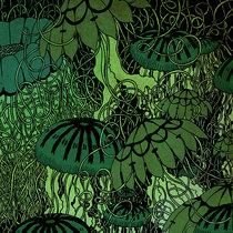 The Island Of Misfit Toys/Nervous Passenger split cover art