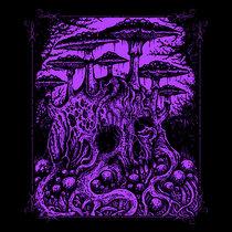 Enfin Morte cover art