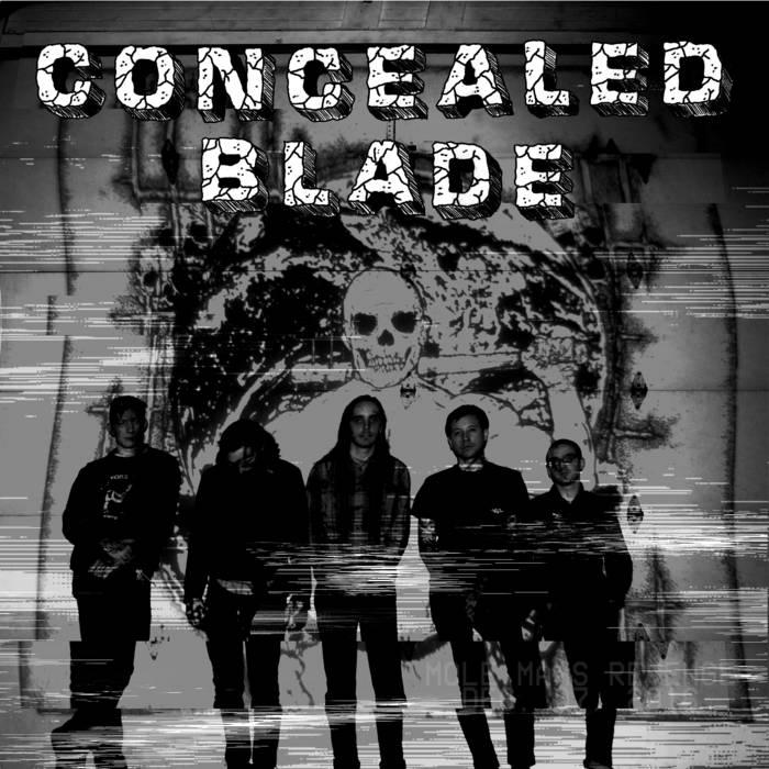 CONCEALED BLADE