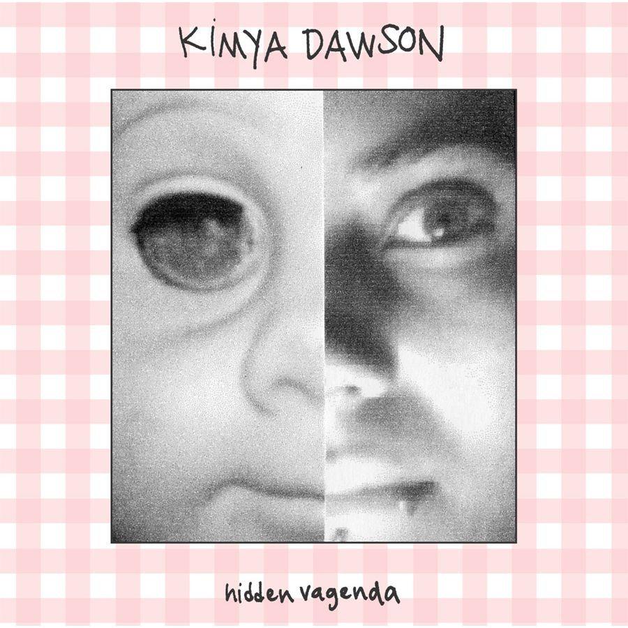 hidden vagenda kimya dawson