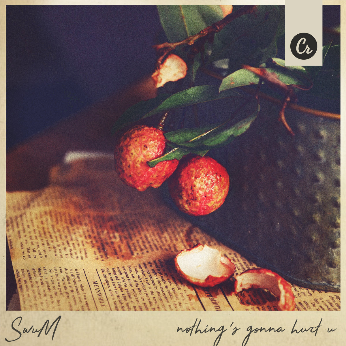 nothing's gonna hurt u by SwuM album art