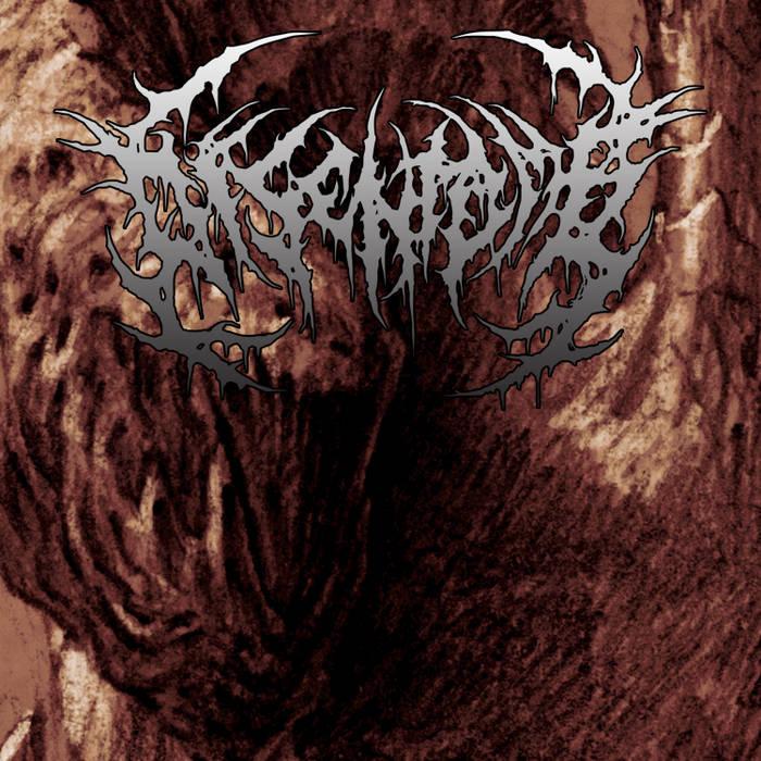 Disentomb | Promo 2012 cover art