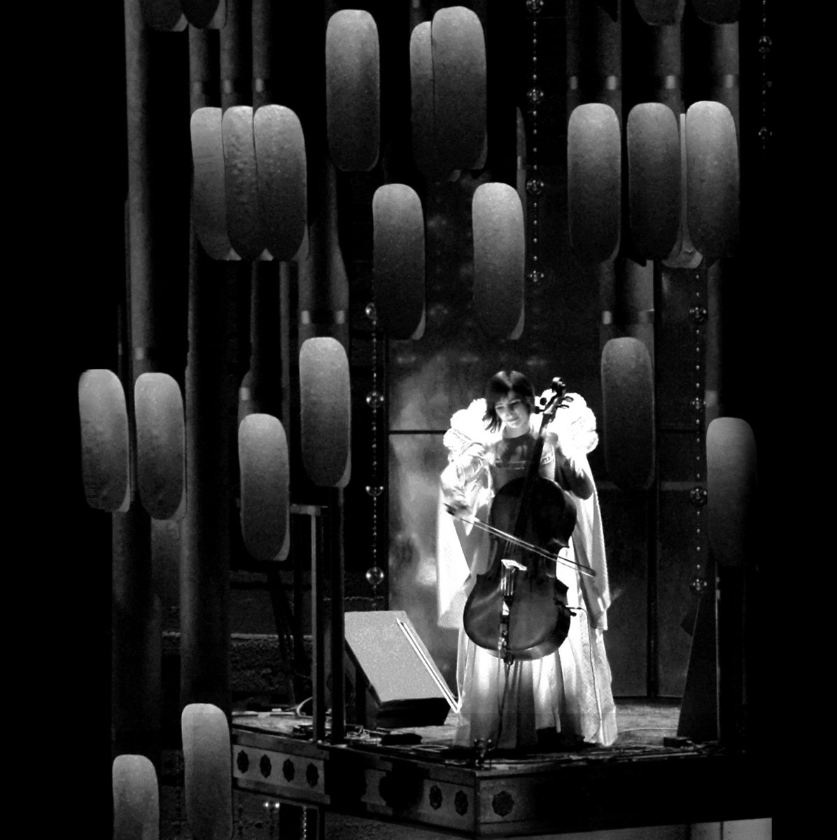 Glass vase cello case bonfire madigan discography reviewsmspy