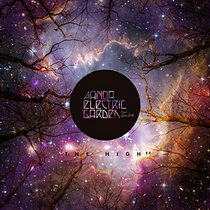 Panda Electric Garden featuring Alice Jacq - The High (David Duriez Brique Rouge Remix) [2020 Remastered Version] cover art
