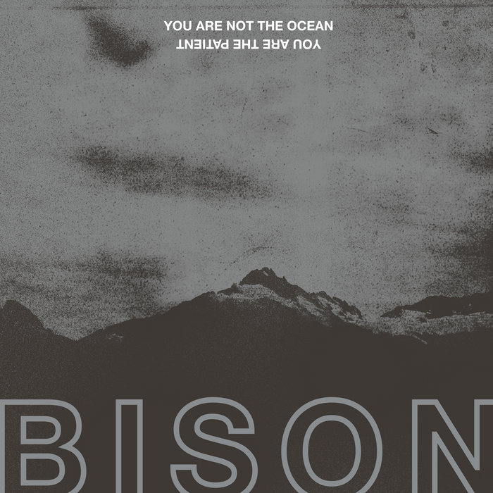 Until The Earth Is Empty | BISON