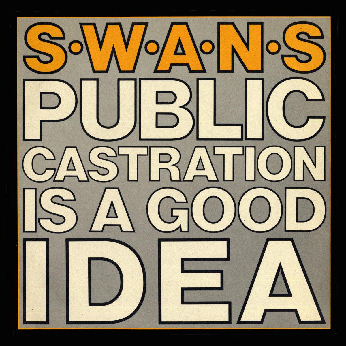 public castration is a good idea swans