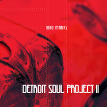 Detroit Soul Project II cover art