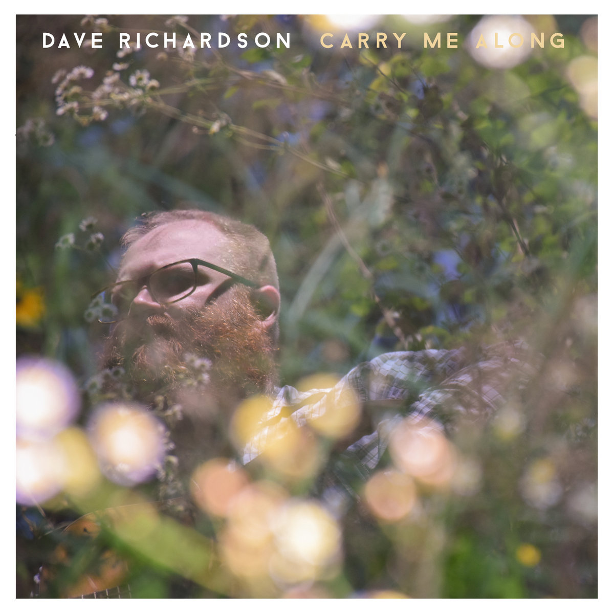 Carry Me Along >> Carry Me Along Dave Richardson