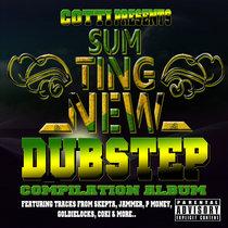 Sumting New Dubstep Album STN 003 cover art