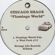 (Strange Life Records SLR029) Flamingo World cover art