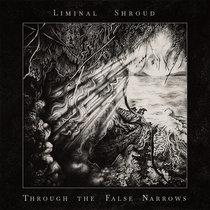 Through the False Narrows cover art