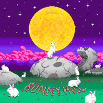 bunnyhill cover art