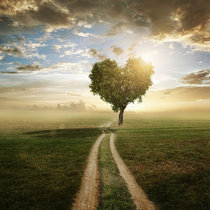 492 Loving Loving Love (Beyond Love Reprise) cover art