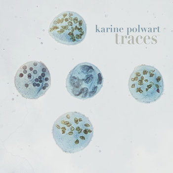 TRACES by Karine Polwart