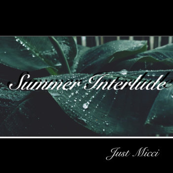 Summer Interlude by Just Micci
