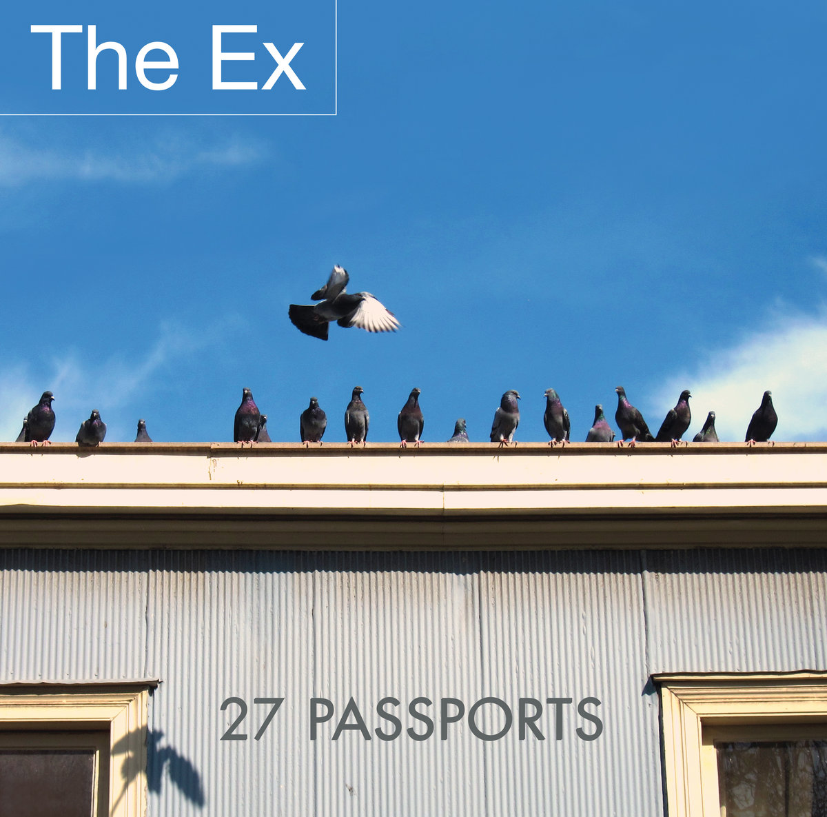 new blank document the ex