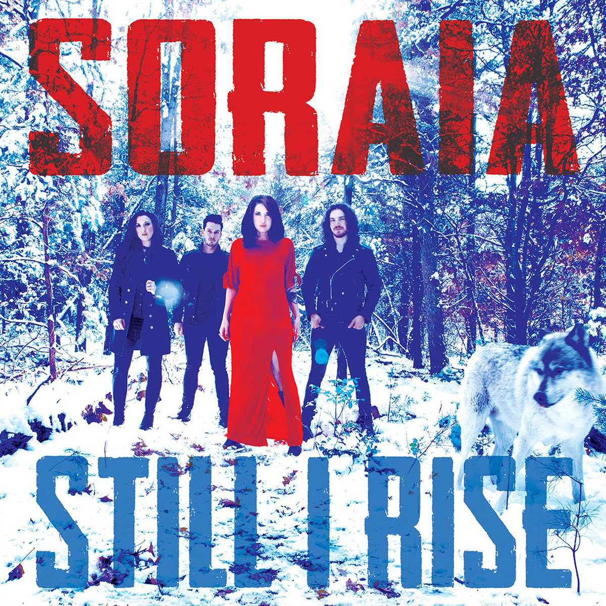 Image result for SORAIA DISCOGRAPHY