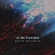 Valles Marineris cover art