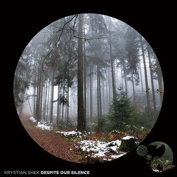 Despite Our Silence by Krystian Shek