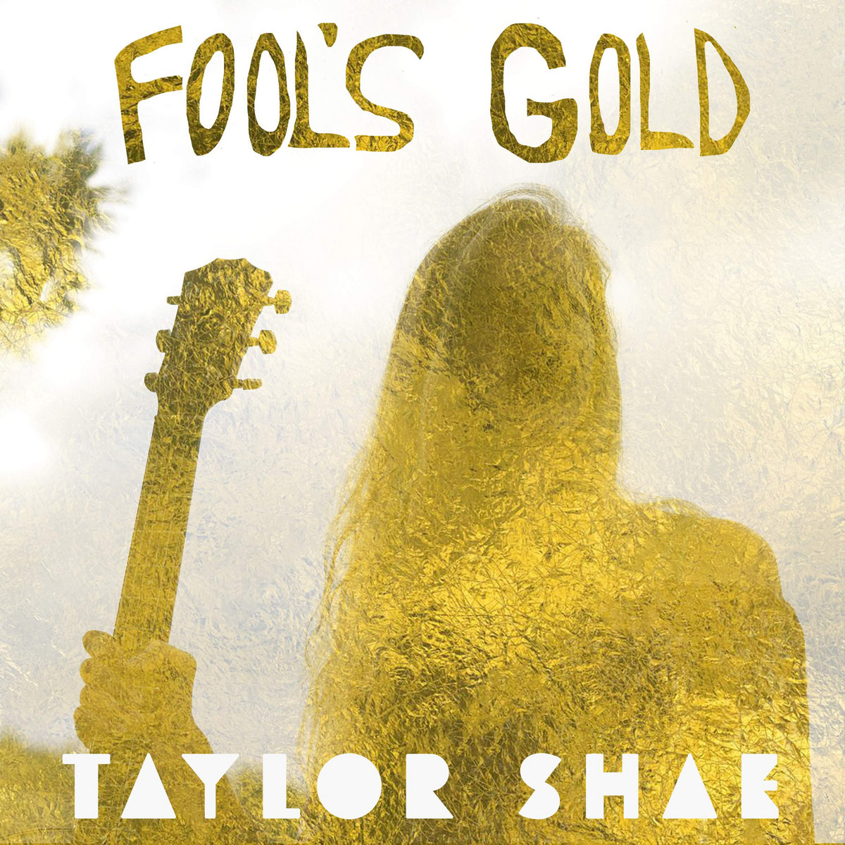 Fool's Gold by Taylor Shae