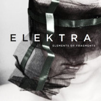 Elements of Fragments cover art