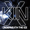 Underneath the Ice Cover Art