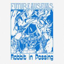 Rabbit in Passing cover art