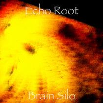 Brain Silo cover art