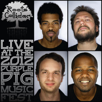LIVE at the Purple Pig Music Festival by RootsCollider