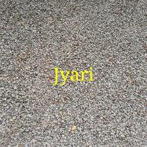 Jyari cover art
