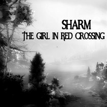 The Girl In Red Crossing cover art
