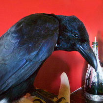 Nevermore cover art