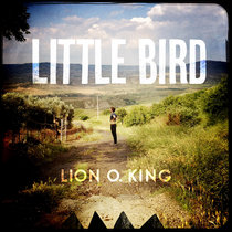 Little Bird cover art