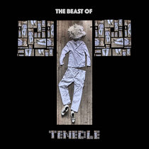 THE BEAST OF TENEDLE cover art