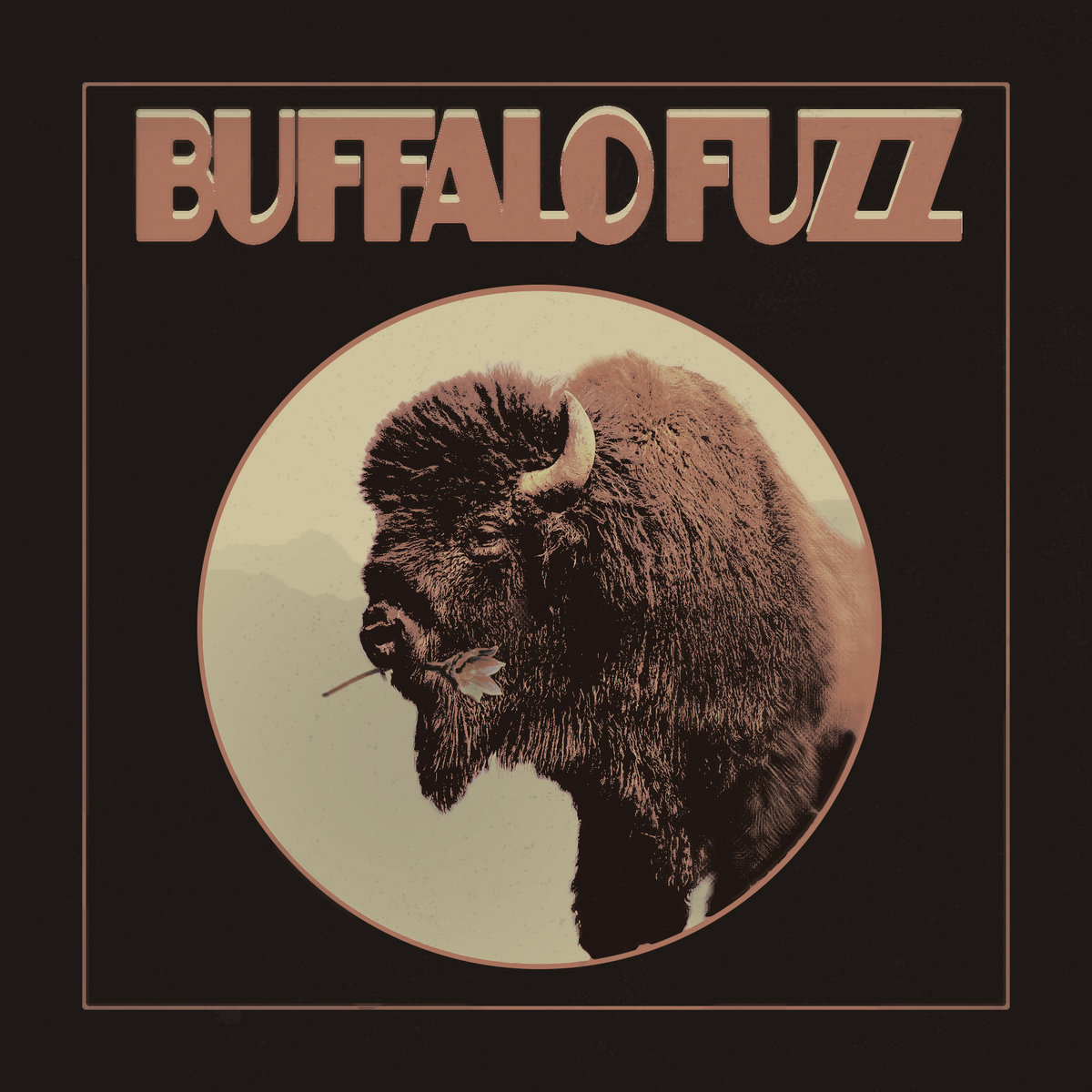 Buffalo singles