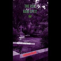 The 420 Raw Split cover art