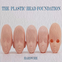 The Plastic Head Foundation cover art